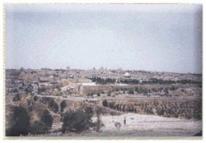 The Cemetery on the Mount of Olives